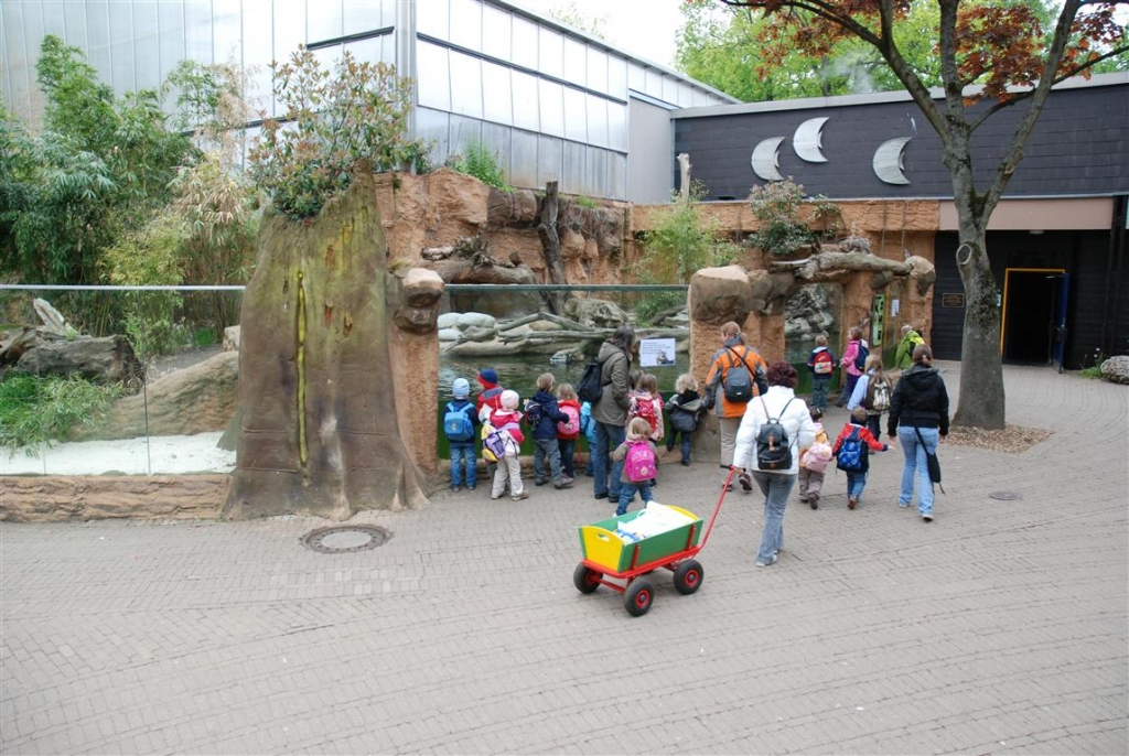 Zoo Duisburg AG - Außengehege Riesenotter